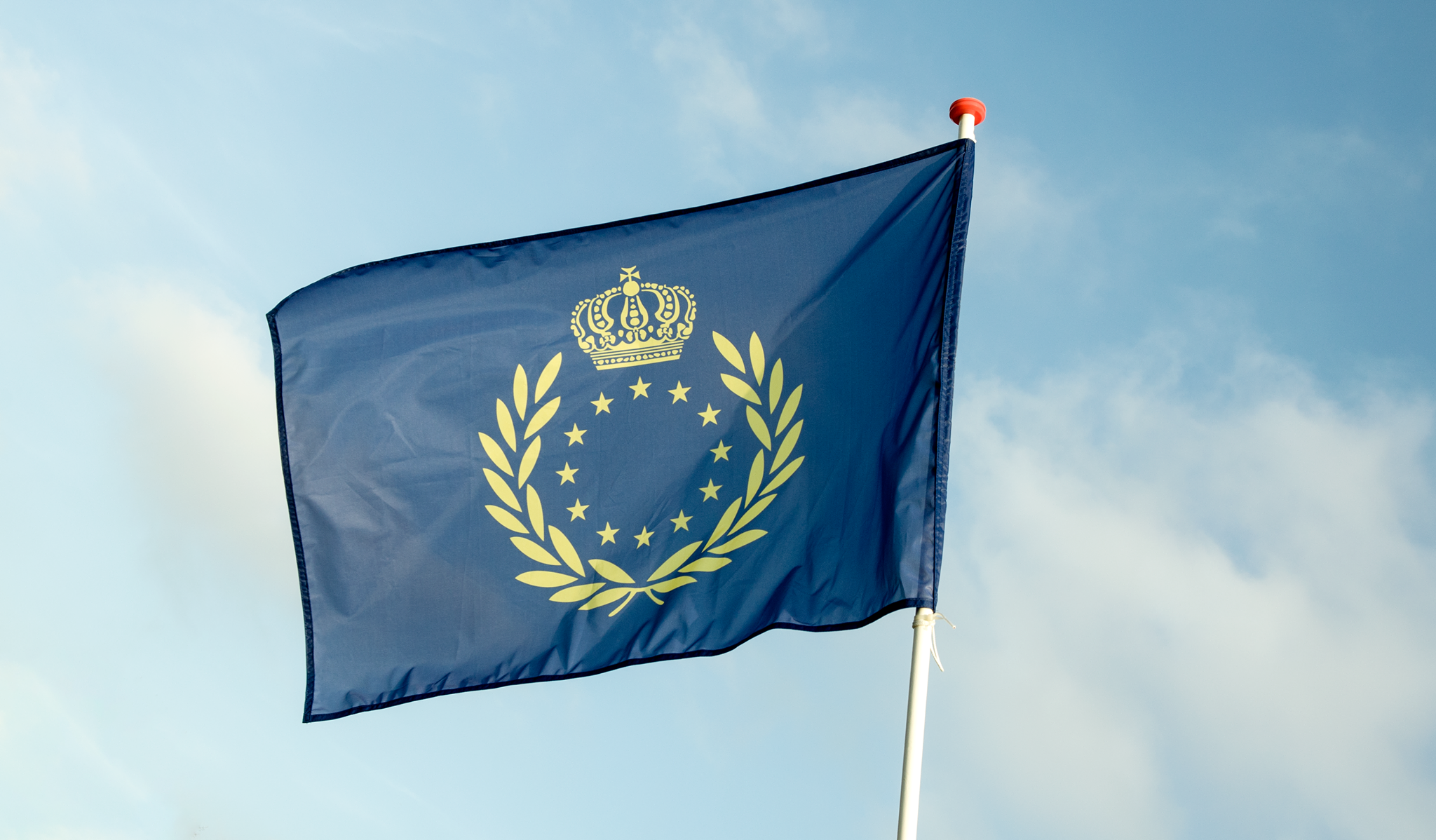 The gold and blue banner of the Pan-European Movement waving in the serene European skies